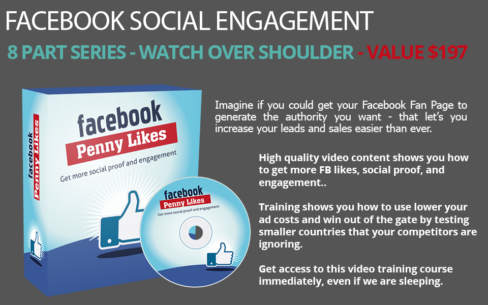 Facebook Engagement Penny Likes PLR Videos